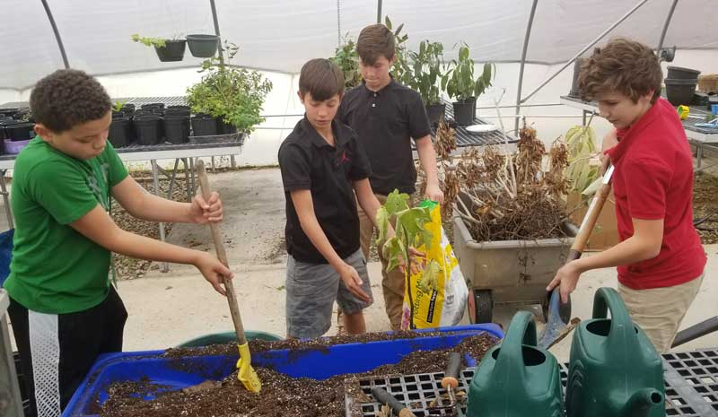 Beta Club students from Hughes Academy (Grason and Brayden Belton) and Mauldin Middle (Aaron Sims) along with another Hughes student (Kevin Taber) volunteered to clean up the greenhouse at the Washington Center. The boys worked hard to pull weeds, repot plants, and reorganize the greenhouse. The boys also helped to clean up the pet cages inside of the adapted environmental classroom. We extend a big thank you to this outstanding young men for their hard work!